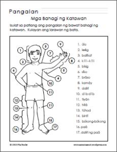 Mga Bahagi ng Katawan/Parts of the Body Worksheets | Samut-samot