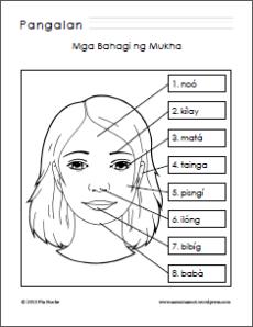 Mga Bahagi ng Mukha/Parts of the Face Worksheet
