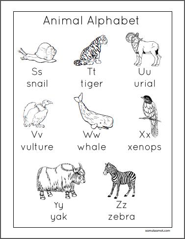 Animal Alphabet_p3